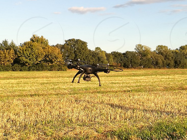 Aerial photography drone flying on a yellow field photo