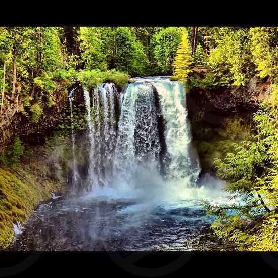 Sahalie Falls Oregon photo