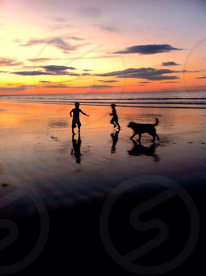 Boys silhouette sunset golden hour play chase dog brothers family beach ocean photo
