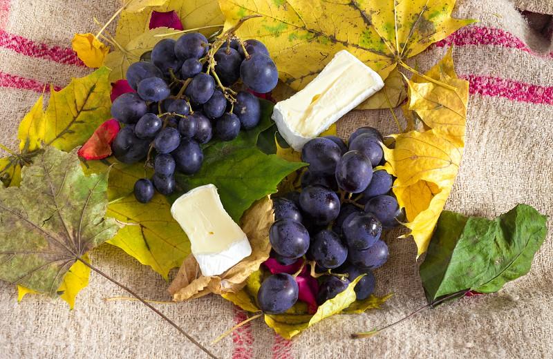 Autumn fruit cheese setup photo