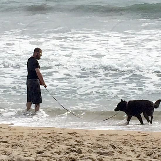 Beach man and dog  photo