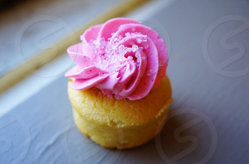 Pink mini cupcake photo