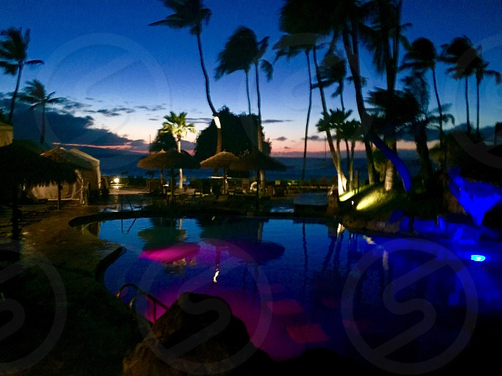 Relaxing in Maui  photo