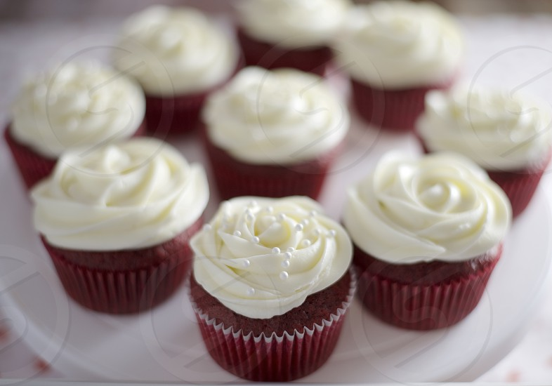Red velvet cupcakes shallow depth of field photo