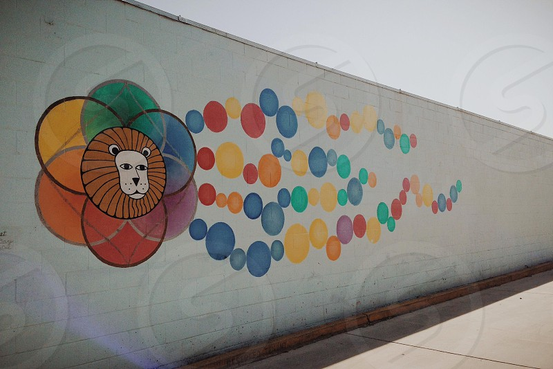 lion with multicolored circles graffiti panoramic photo photo
