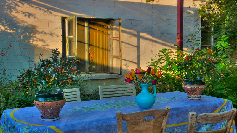 Afternoon shadows in an Arizona garden patio... photo