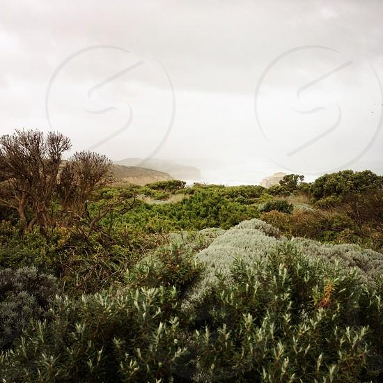 Southern Australia photo
