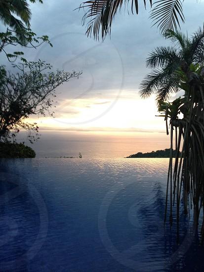 Sunset pool ocean infinity pool palm trees sun water serenity evening photo