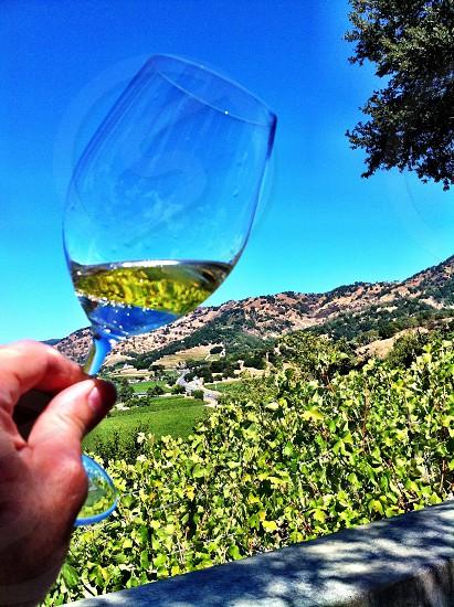 short stem wine glass photo