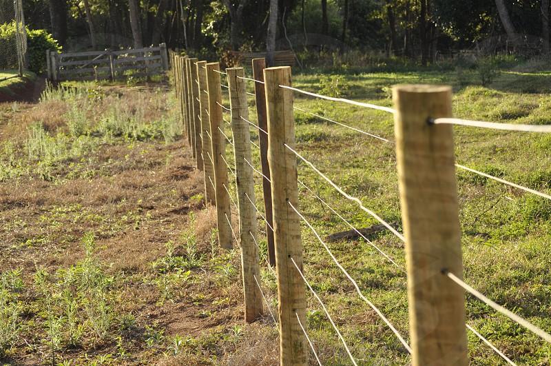 Nature Farm   photo