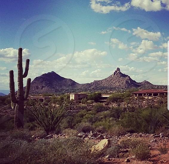 Scottsdale Arizona photo