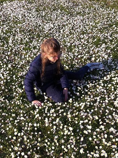 woman sitting on daisy flowers field photo