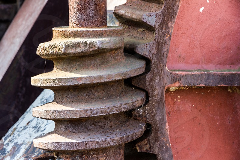 Vertical Positioned Worm Wheel and Gear photo