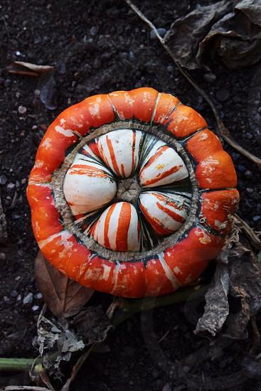 orange round device photo
