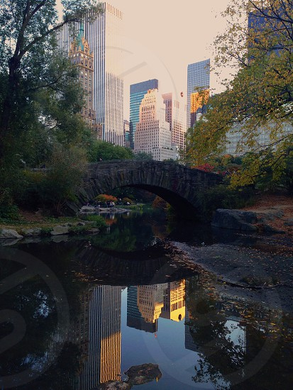 Central Park - NYC photo