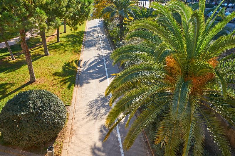 Valencia Turia park gardens aerial view at Spain photo