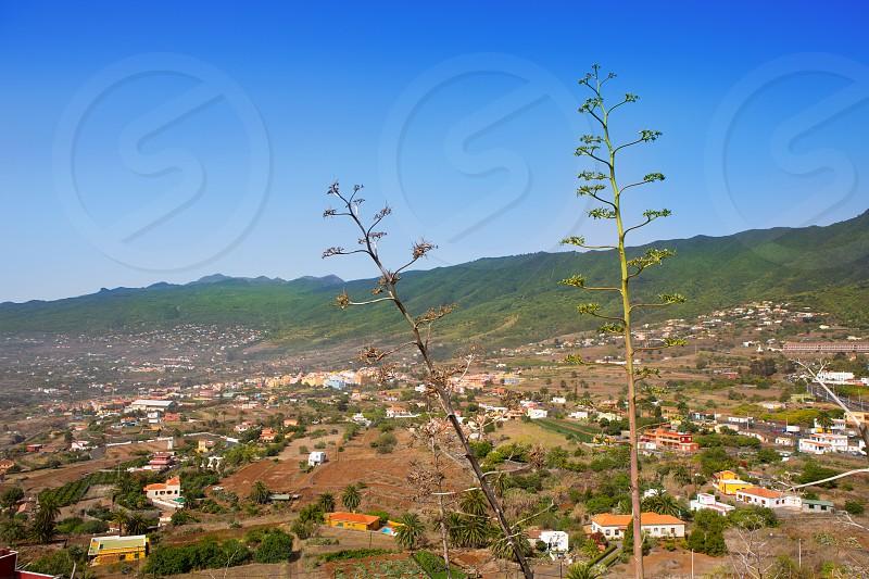 La Palma Caldera Tabueirnte mountain with agave in canary Islands photo