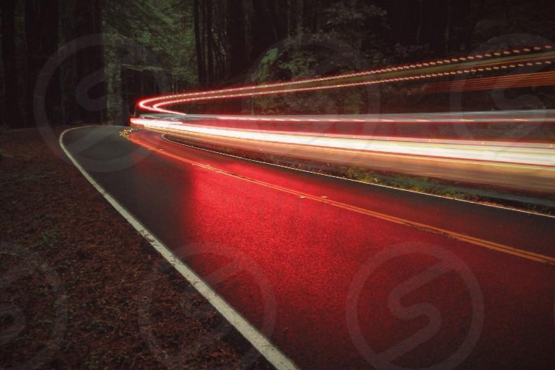 Through the Mendocino Redwoods.  photo