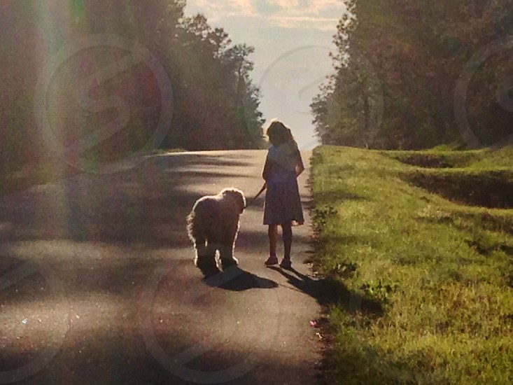 Girl and her dog walking into the sunset.  photo