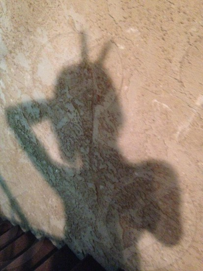 person's shadow photo