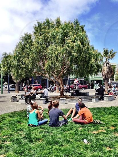 People park grass tree photo