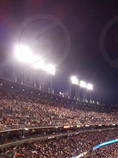 Stadium lights photo
